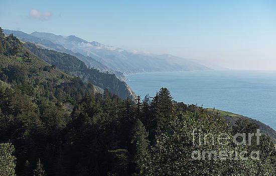 Big Sur by Cathy Alba