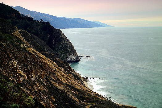 Joyce Dickens - Big Sur Coastline Four