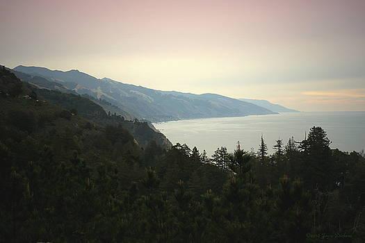 Joyce Dickens - Big Sur Coastline Three