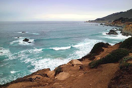 Joyce Dickens - Big Sur Coastline Two