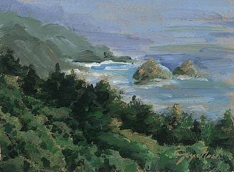 Big sur II by Joyce Nash