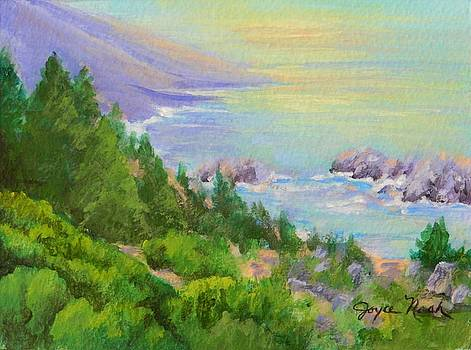 Big Sur IV by Joyce Nash