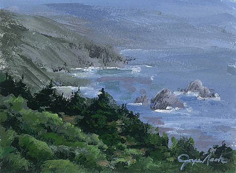 Big Sur by Joyce Nash