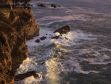 Big Sur Light C A by Steve Gadomski