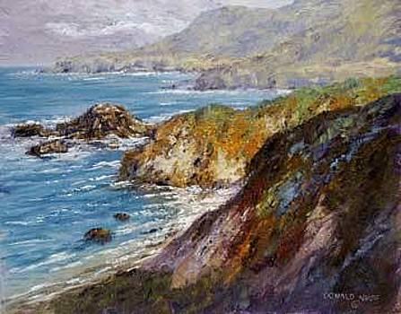 Big Sur Light by Donald Neff