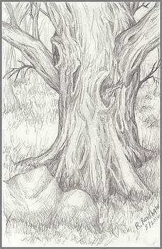 Big Tree by Ruth Renshaw