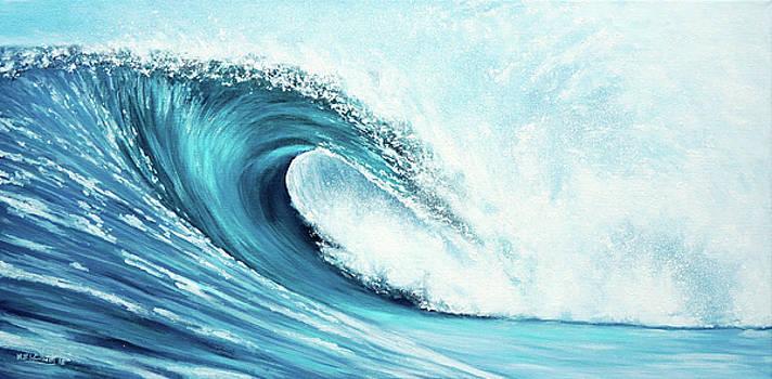 Big Wave Big Surf by Mark Woollacott