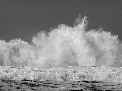 Big Wave by Jacklyn Duryea Fraizer