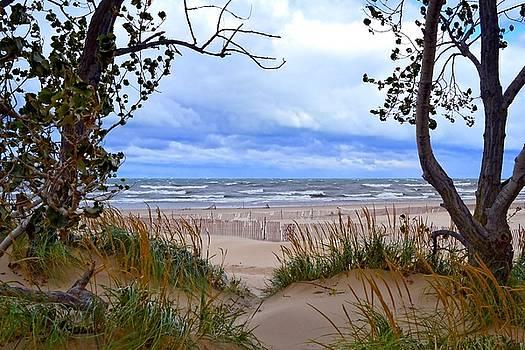 Michelle Calkins - Big Waves on Lake Michigan 2.0