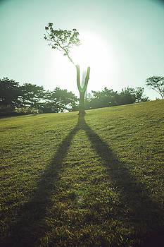 big Y by Hyuntae Kim