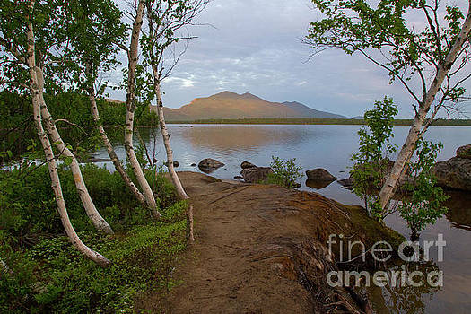Bigelow Mountain Early Morning by Denise Lilly