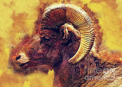 Bighorn sheep by Justyna JBJart
