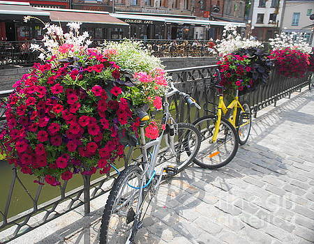 Bike and Flowers by Therese Alcorn