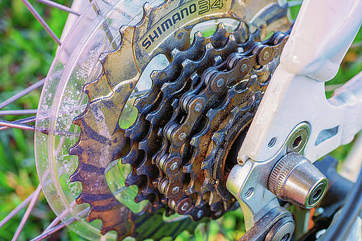 Bike Chain by Dennis Dugan