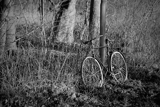 Bike - In The Wild by Mythic Ink