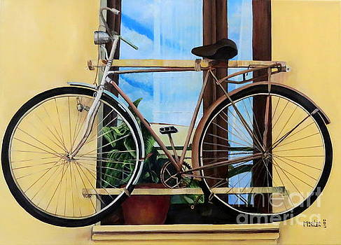 Bike In The Window by Marilyn McNish