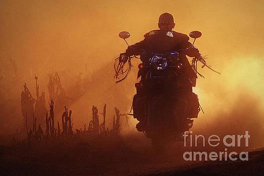 Dimitar Hristov - Biker man riding motorcycle on the sunset