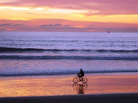 Biker on Venice Beach  by Victoria  Johns