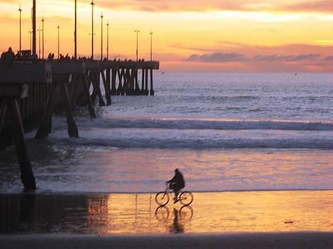 Biker strolling near the Venice Pier by Victoria  Johns