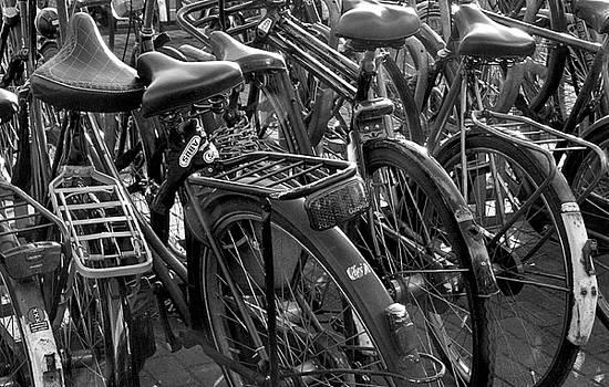 Bikes by April Bielefeldt