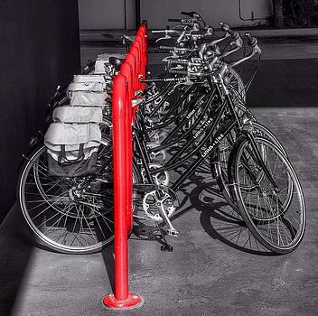 Bikes by Gia Marie Houck