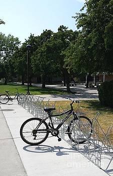 Bikes on Campus by Madeleine Prochazka