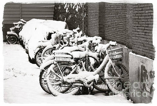 Bikes parked and full of snow by Stefano Senise