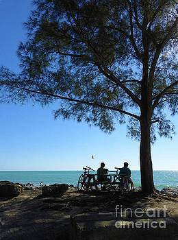 Biking ver 1 by Larry Mulvehill