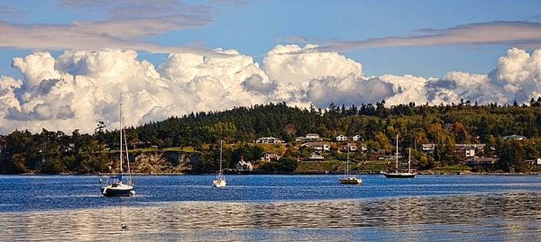 Billowing Clouds on the Cove by Rick Lawler