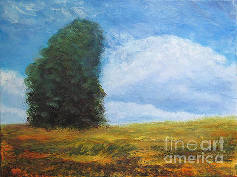 Billowy Clouds over Field #1 by Vivian Haberfeld