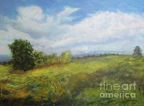 Billowy Clouds over Field #2 by Vivian Haberfeld