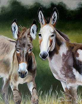 Bill's Donkeys by Phyllis Beiser