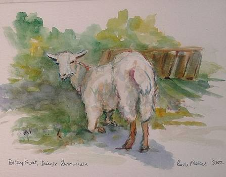 Billy Goat by Ruth Mabee