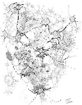 Regina Valluzzi - Biology of an Idea