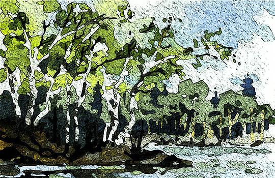 Birch at the Pond by Michael Rutland