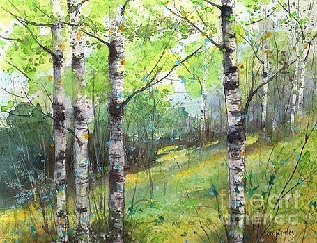 Birch Spring Meadow by Diane Splinter
