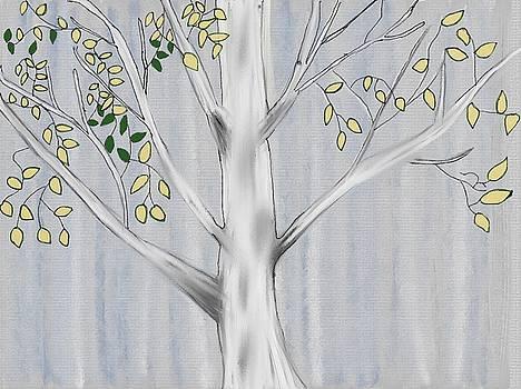 Birch Tree by Paula Brown