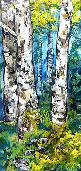 Birch Trees by Cassandra Gallant