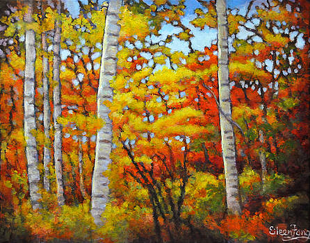 Birch Trees in Autumn by Eileen  Fong