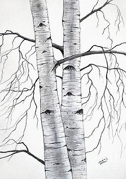 Christopher Shellhammer - Birch Trees in Winter