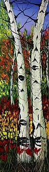 Birch Tree's Of Autumn #17 by Portland Art Creations