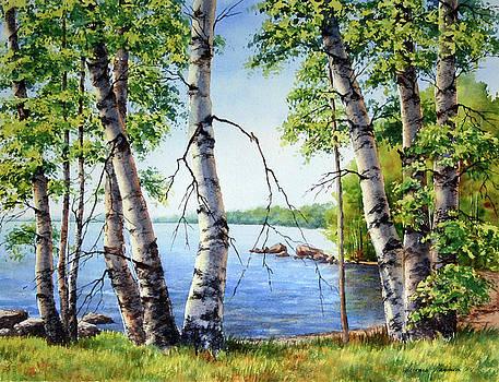 Birch trees on Long Lake by Varvara Harmon