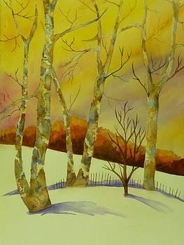 Birch Trees by Tara Bennett