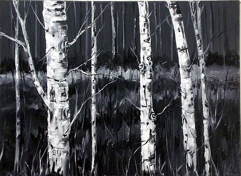 Birches in Black and White by Lily Adamczyk