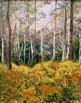Birches Of Alaska by Jackie Langford