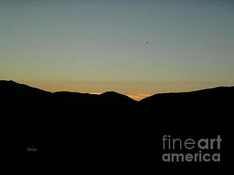 Felipe Adan Lerma - Bird at Sunset