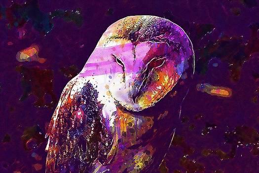 Bird Barn Owl Owl Barn Animal  by PixBreak Art
