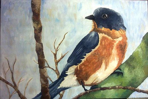 Bird by Basma Saadeh