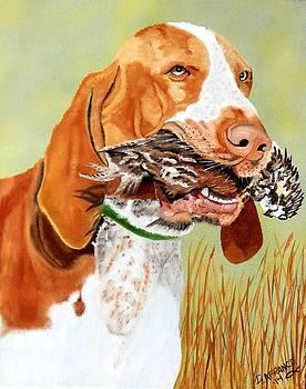 Bird Dog Bracco Italiano by Debbie LaFrance