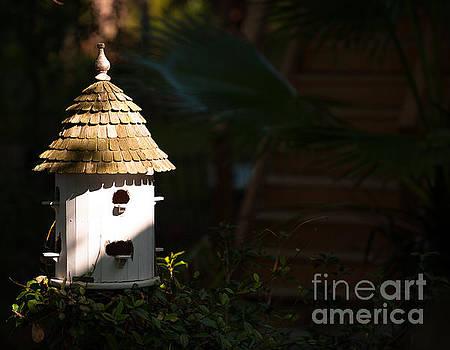 Dale Powell - Bird House